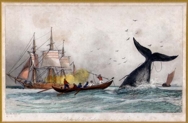 Jacobson Marine Antiques Whaling Collection